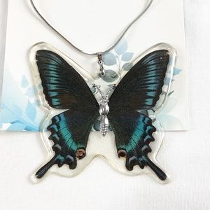 Jewelry - Genuine Butterfly Alpine Black Swallowtail